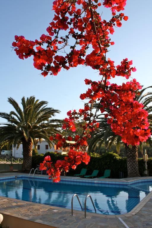 svoemmebasseng med blomster cormoraos Kreta